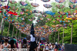 Electric Forest Day 1 (47 of 162)